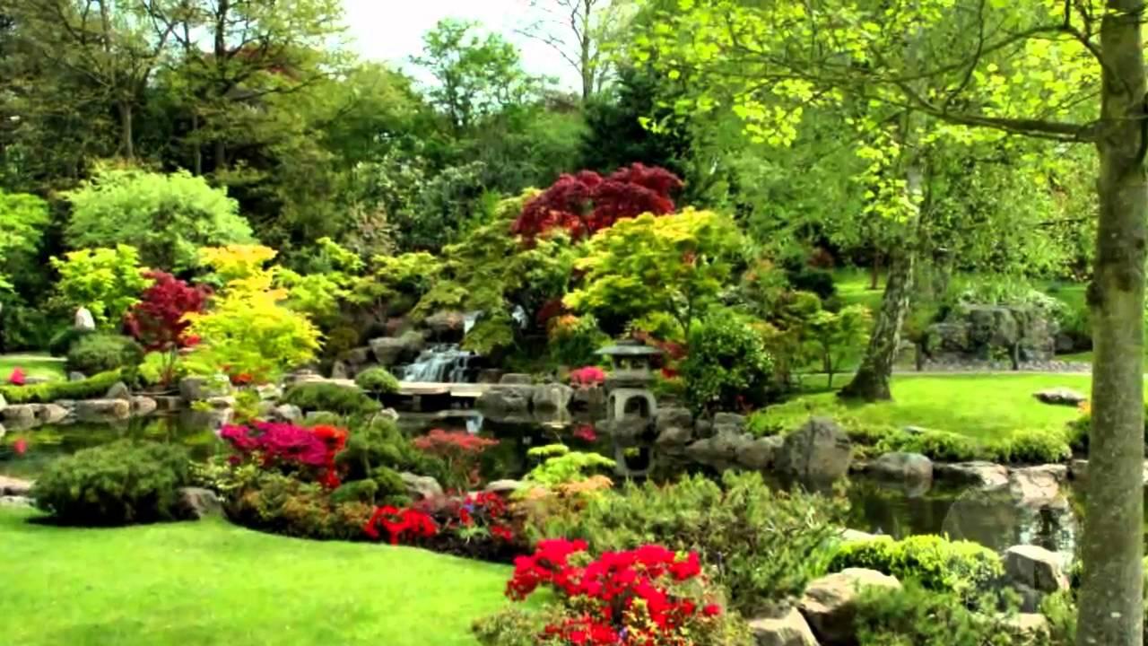 Curso de jardinagem iped youtube for Paisagismo e jardinagem