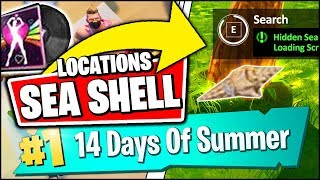 SEARCH THE HIDDEN SEA SHELL IN THE BEACH THEMED LOADING SCREEN LOCATION (Fortnite 14 Days Of Summer)