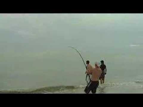 Shark Fishing on Sanibel