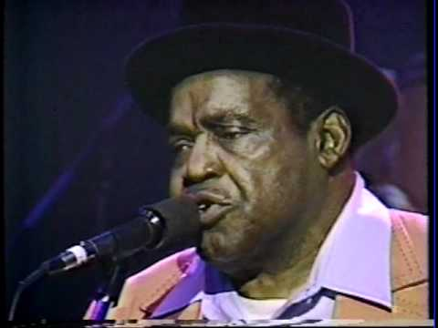 Willie Dixon (w Stephen Stills) - Back Door Man - Muddy Waters Tribute, 1983