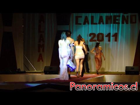 Verano Calameño 2011 Miss Transparencia Panoramicos.cl
