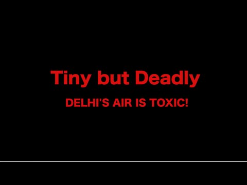 Delhi's Toxic Air Pollution: Tiny but Deadly