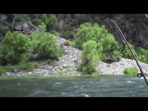 Fly Fishing in the Black Canyon of the Gunnison National Park