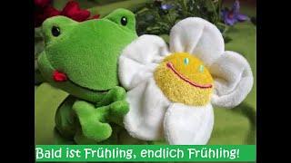 Das Tijo-Frühlingslied-Tijo Kinderbuch