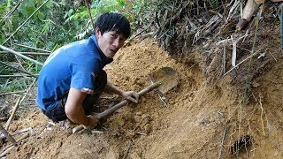 Digging cave, catching the mouse ✦ Wild live