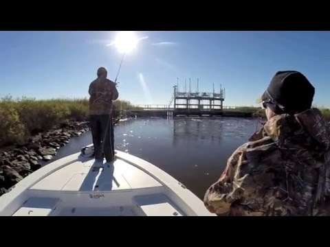 Calcasieu lake fishing camp for sale how to save money for Fishing camps for sale in louisiana