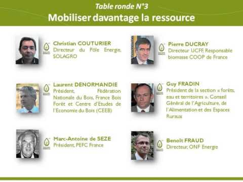 Colloque National Biomasse 2013 - BOIS ENERGIE ET BIOCOMBUSTIBLES - Table ronde n°3