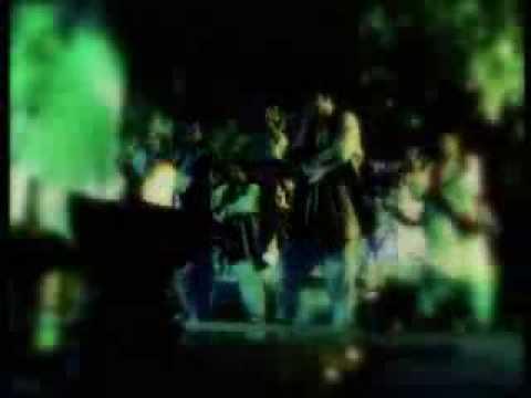 Hadiqa Kiani New Song Wanjli video