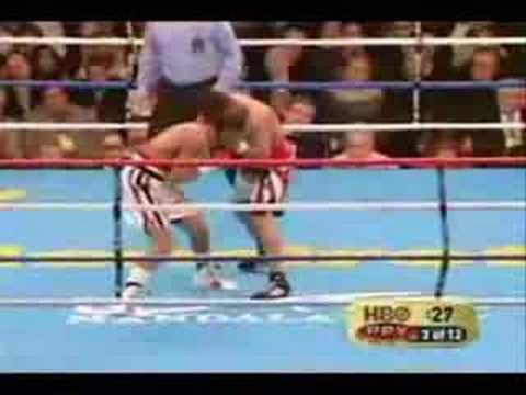 Some of Cotto's best moments and K.O's featuring Judah, Torres, Quintana, Corley and Rage Against The Machine. Bring on Margarito, pacquiao, clottey, martine...