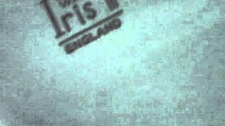 IRIS WOODS WARE LIGHT BLUE OVAL PLATE