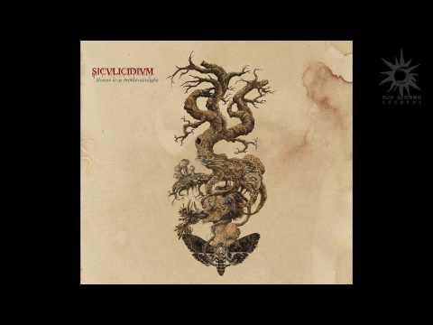 Siculicidium - Hosszú Út az Örökkévalóságba (Full Album)