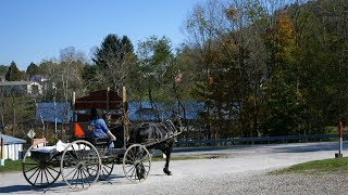 "Amish Internal Fountain of Youth Yields Experimental ""Longevity"" Drug"