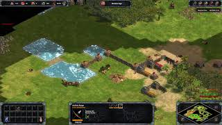 Age of Empires  Definitive Edition 3v3 conti expert