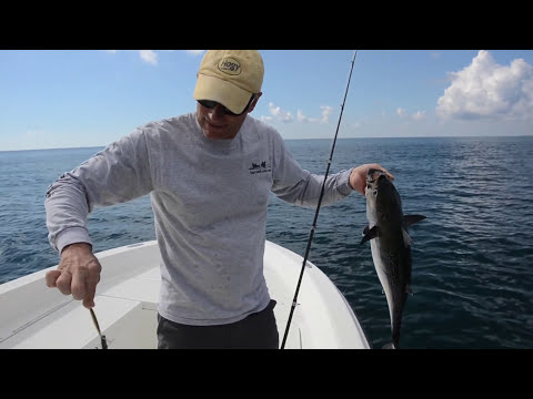 Cape Cod Albie Fishing