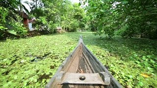 Exotic Kerala Backwater Stock Footages (Allappey, India)