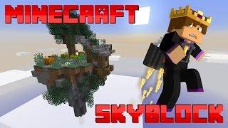 MINECRAFT SKYBLOCK SERVER! (BeastCraft Skyblock Survival Season 3)