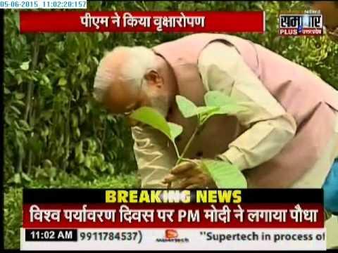 World Environment Day: PM Narendra Modi plants sapling