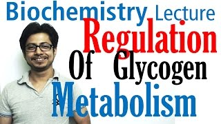 Regulation of glycogen metabolism | Glycogen metabolism lecture 3