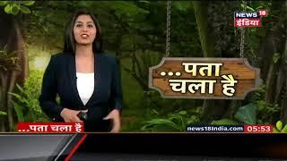 जंगल में शेर को मिला 'सवा शेर' | पता चला है | News18 India