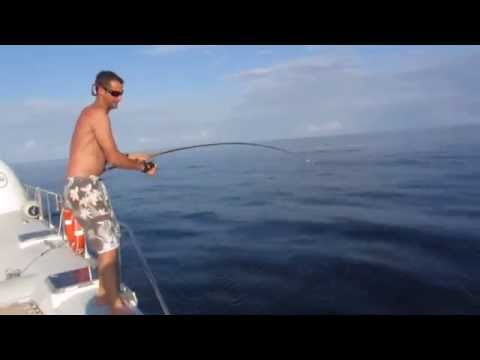 Shark Attack Fishermans Big Tuna - Crazy Shark Fishing Video
