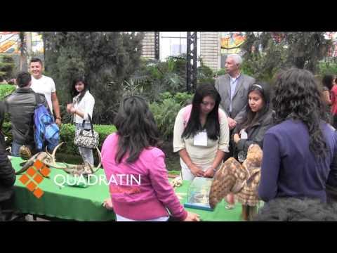 Inauguran exposición de hongos y de biodiversidad en Toluca