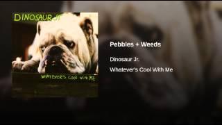 Pebbles + Weeds