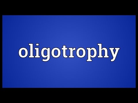 Header of oligotrophy
