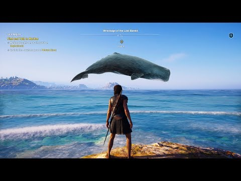 Having A Whale Of A Time! (Game Fails #202)