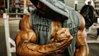 Bodybuilding Motivation 2016 - Size and Aesthetics