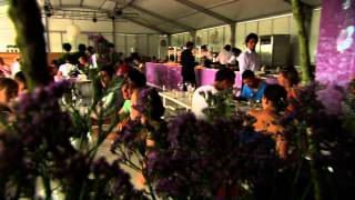 Wout Bru - Food for VIP's at Tomorrowland 2012