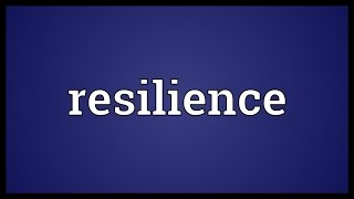 Resilience Meaning