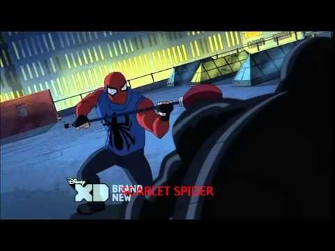 Ultimate Spider Man We...