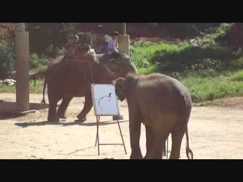 The Truth about Elephant Paintings