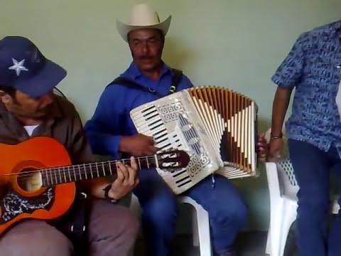 AJOYANOS DE SINALOA-- EL TROQUERO