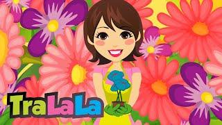Colorate sunt florile toate - Cantece pentru copii