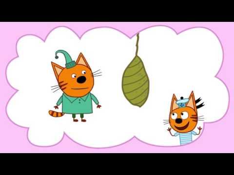 Три кота (35 серия) - Бабочка