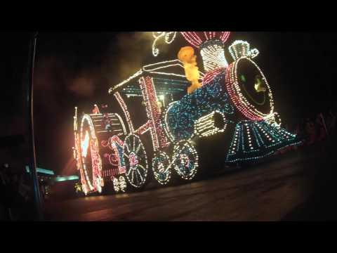 Tokyo Disneyland Electrical Parade Dream Lights GoPro HERO3