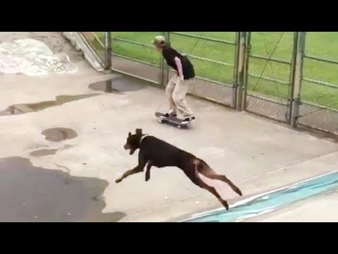 INSTABLAST! - INFANT Bombs SF HILL!! Dog Busts Huge AIR! Shane ONeill, Heelflip Hill Bomb BATTLE