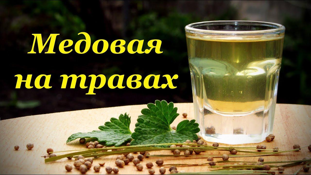 Настойки на спирту на травах в домашних условиях 230