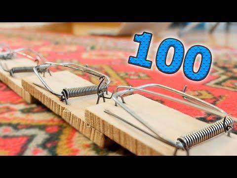 ЧТО ЕСЛИ 100 МЫШЕЛОВОК СРАБОТАЮТ ОДНОВРЕМЕННО?