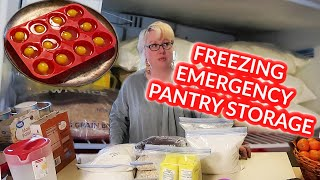 QUARANTINE Kitchen | HOW To FREEZE BREAD, EGGS, FLOUR, MILK, RICE, OATMEAL, CHEESE, BUTTER - LOTS!