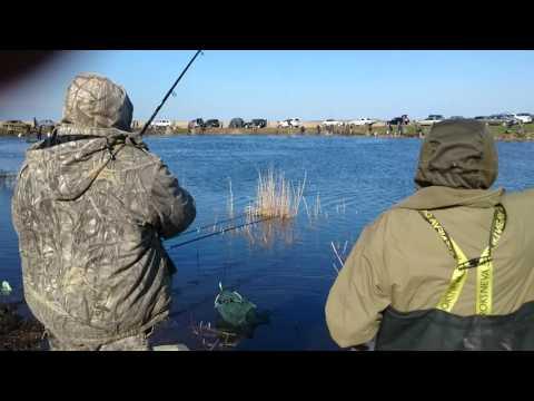Рыбалка 7.05.2016 Омская область