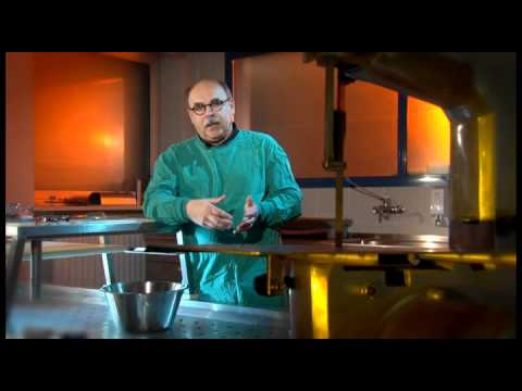 Interview mit Dr. Eduard Egarter Vigl