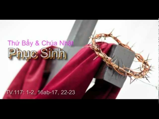 TH BY &amp; CHA NHT Phc Sinh_TV117