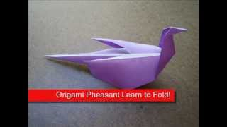 How To Make An Origami Pheasant