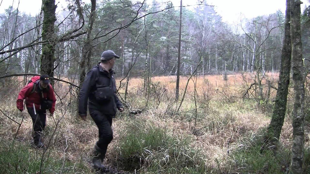 skogstur norsk film
