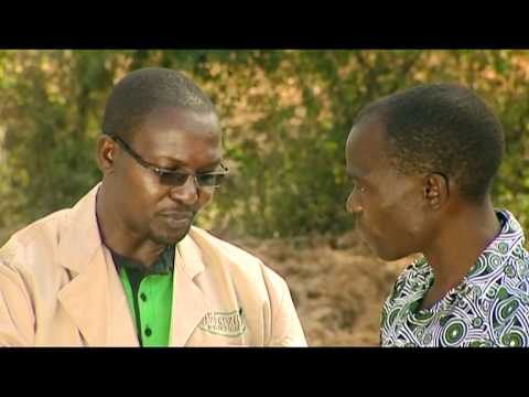 Series 1-Episode 9 [Shamba Shape Up Episode 9], Scene 1