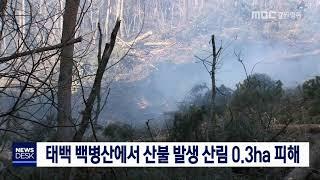태백 백병산에서 산불 발생 큰 불 진화