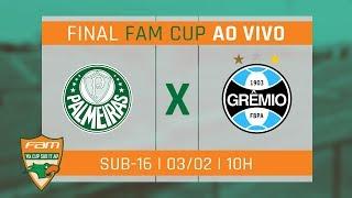 ÉÉÉHH CAMPEÃO!! PALMEIRAS 2 X 1 GRÊMIO - FAM CUP SUB-17