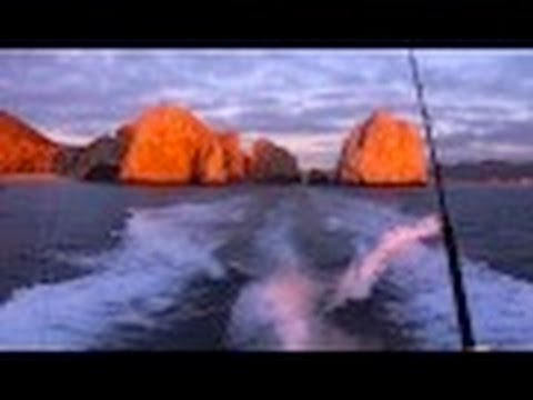 Marlin Fishing in Cabo San Lucas, Mexico